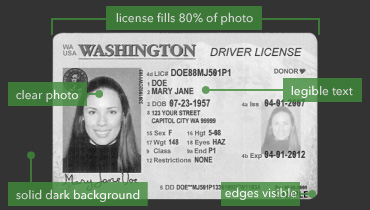 zamplebox driver's license guidelines